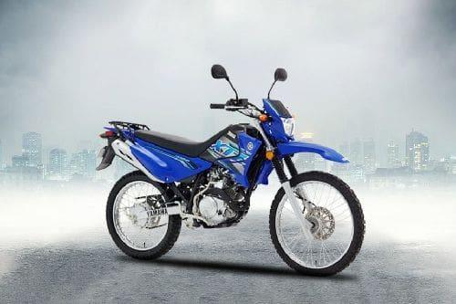 Yamaha XTZ 125 Slant Rear View Full Image